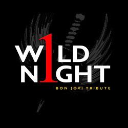 1 Wild Night Band
