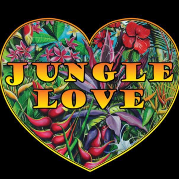 Jungle Love Band